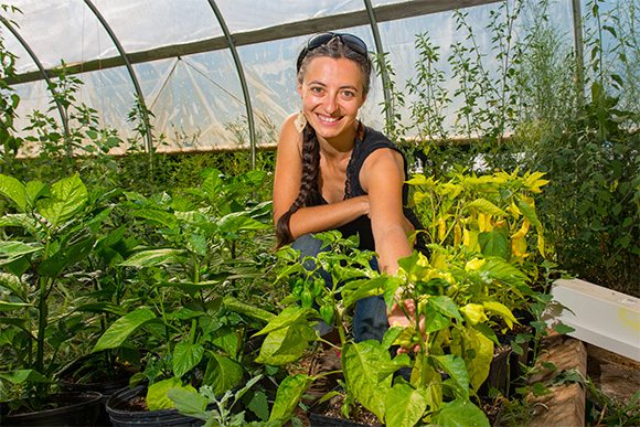Stefanie Staufer with her hot peppers at Tilian Farm